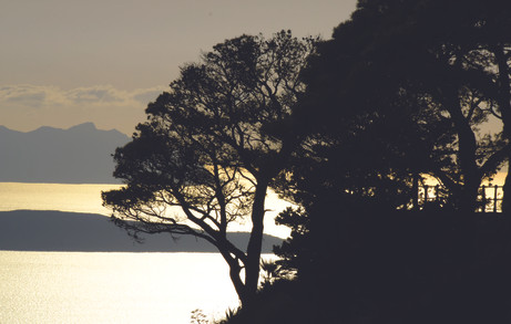 sunset-5818977_1920.jpg