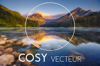 COSY VECTEUR.jpg
