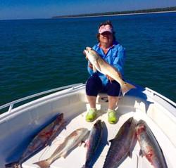 Redfish King Mackeral