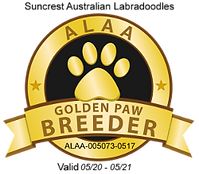 Suncrest Golden Paw Logo 2020.png