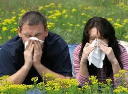 Allergies saisonnières et acupuncture