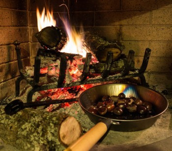 Chestnuts Roasting in Fireplace