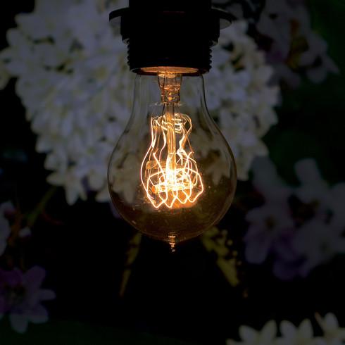 AMPOULE / LIGHT BULB