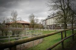 Der Kiefferhof