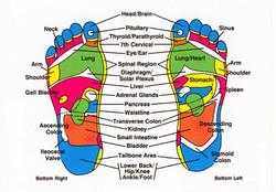footchart.jpg