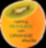 Nothing Rhymes with Orange Studio