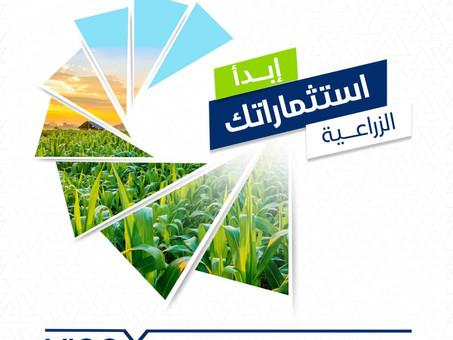 الاستثمار في أذربيجان - القطاع الزراعي