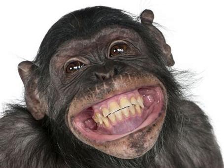 Stimulez son système immunitaire grâce au sourire intérieur