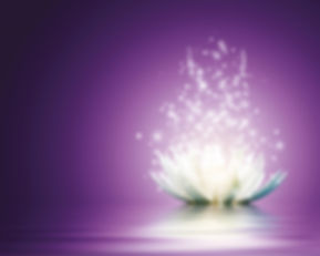 Lotus_edited_edited.jpg