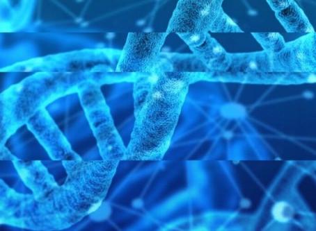 Mutaciones, tecnologías y complejidades para pensar la educación contemporánea