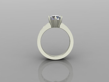 Custom 6 Prong Ring with Channel Front View