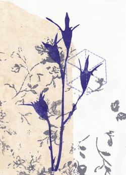 blue flower 5.jpg