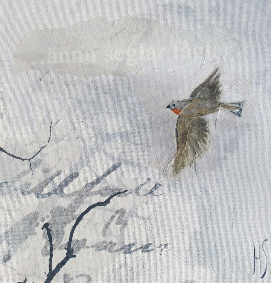 VÄNTA PÅ DIN FÅGEL 3 / WAIT FOR YOUR BIRD 3