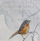 VÄNTA PÅ DIN FÅGEL 1 / WAIT FOR YOUR BIRD 1