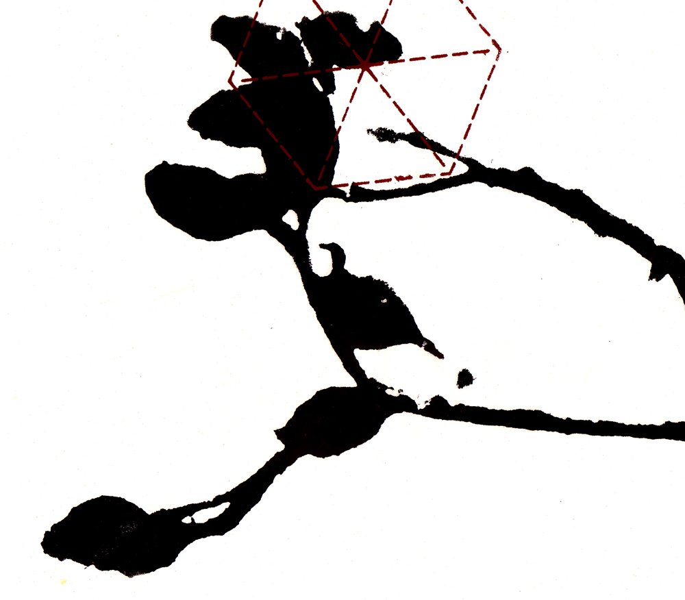 plant geometry-.jpg