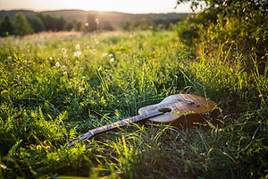 guitar in grass
