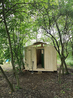 eco-building shower forest