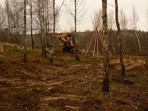 digger, tipi, birch trees