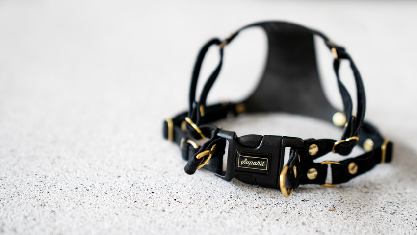 Supakit leather harness for cats