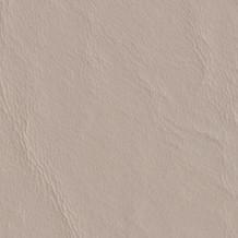 Heron-517585