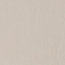 Sandshell-514287