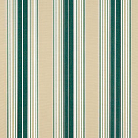 Forest Green Beige Natural Fancy Stripe