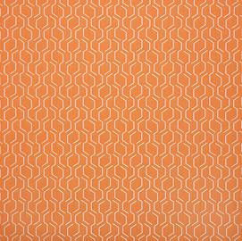 Adaption Apricot 69010-0003