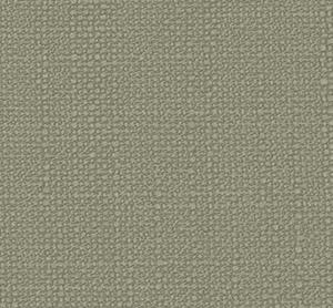 Avila Cement