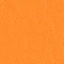 Mandarin-517910