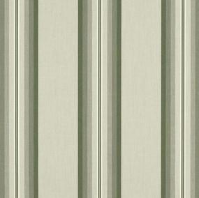 Fern Graduated Stripe 4960-0000