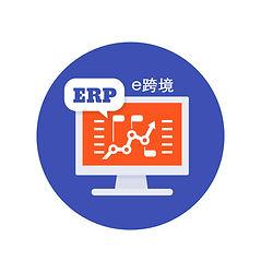 erp-software-icon-vector-21237115 copy.j