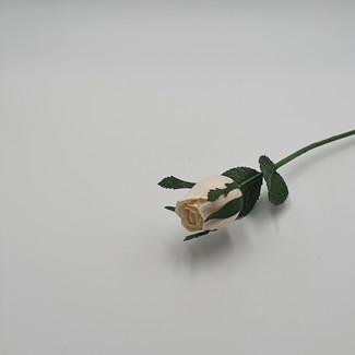 Rose Bud (White)