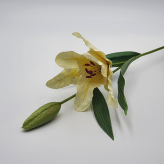 Lily with Bud (Yellow)