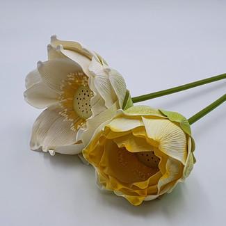 Sere Lotus (White & Yellow)