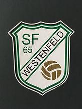 SFW-.JPG