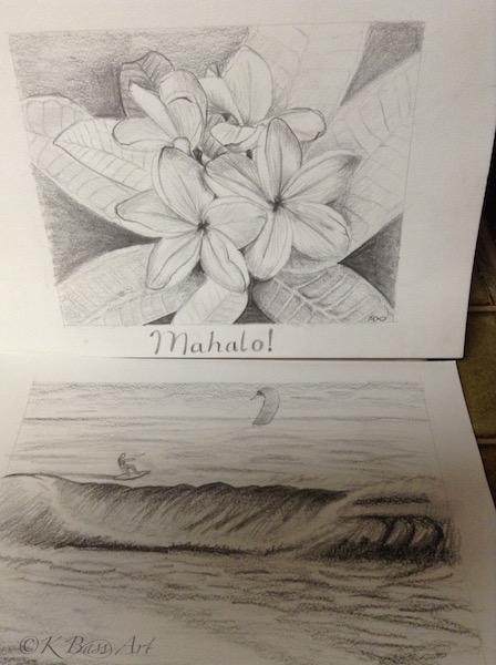 Plumeria Flower & Kite Surfing