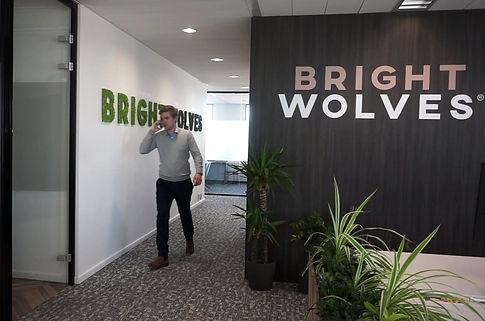BrightWolves-Consultant_edited.jpg