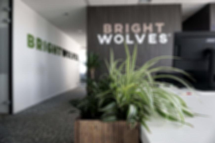 Office-BrightWolves.jpg