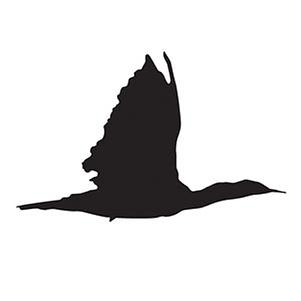 Cormorant-logo-300dpi.png