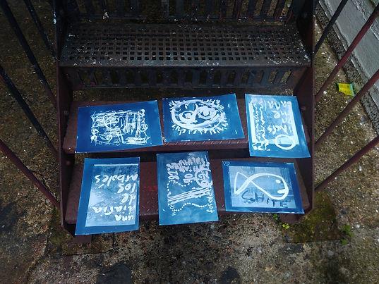 cyanotypes.jpg