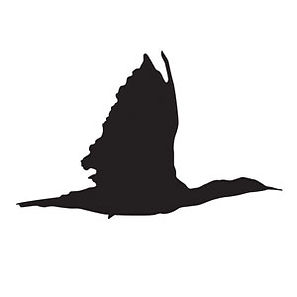 Cormorant-logo-for-Catalist.jpg