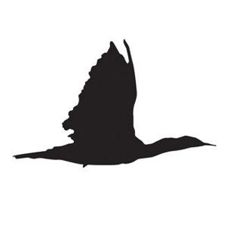 Cormorant-logo-for-Catalist.jpg