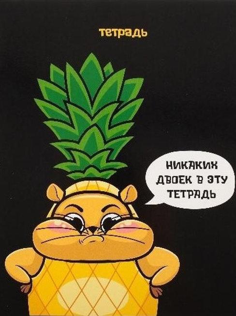 """Тетрадь 48 листов в клетку """"Никаких двоек"""",  УФ-лак"""