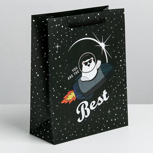 Пакет ламинированный вертикальный «Космос ждёт»