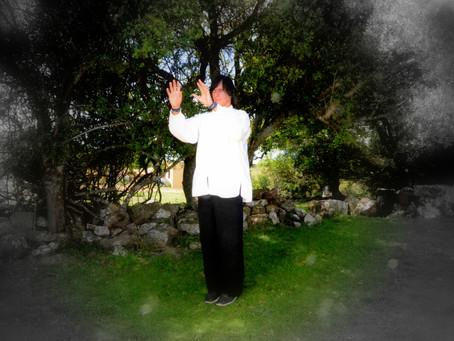 ¿Por qué practicar Zhineng Qi Gong?