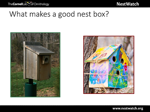 Good Birdhouse (blank).png