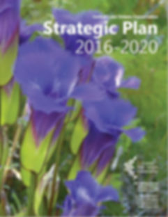 Image of Strategic Plan Cover