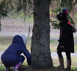Image of Students with a Tree