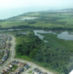 Image of Lynde Shores Conservation Area from an Airplane