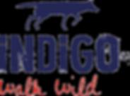 INDIGO-Schuhe.png